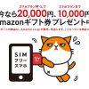 ワイモバイル契約でAmazonギフト最大20000円プレゼントされるキャンペン実施中!【3/31まで】